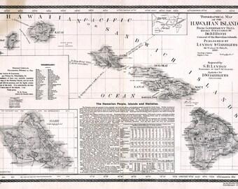 1893 Map of the Hawaiian Islands