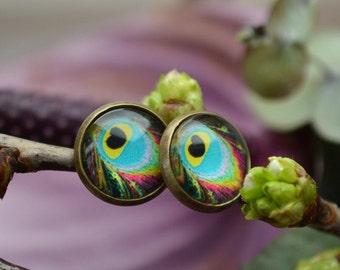 Peacock Earrings, Peacock Feather, Peacock Studs