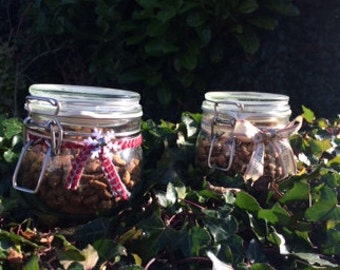 Airtight Jars filled with Dreamies