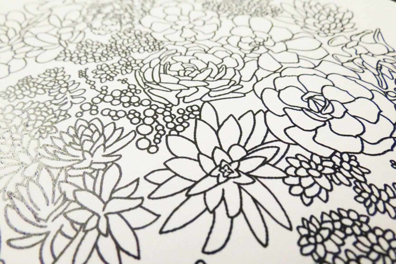 Succulent Plant Garden Coloring Page Digital Download PDF