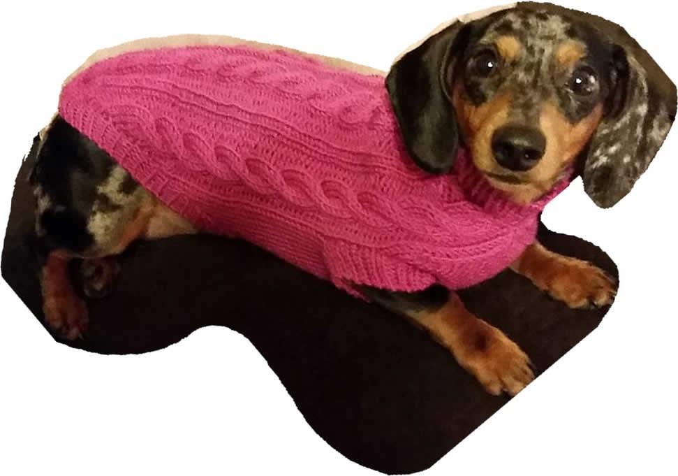 Free Dragon Knitting Pattern : Mini-Dachshund Cable Knit Dog Sweater Pattern by JuneBowmanKnits