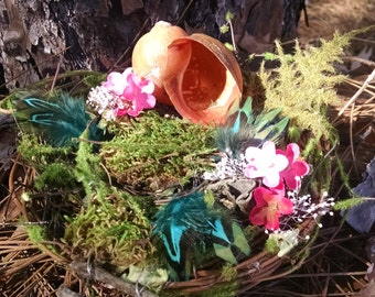 Snail shell tiny house, twig nest, miniature house, ferns and feathers,