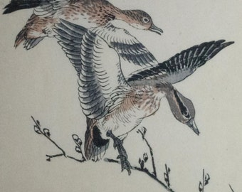 Pair of Geese, ' Gacho ' : An Original, Signed 1880s Japanese Woodblock Print By KONO BAIREI