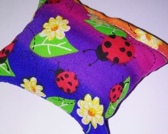 Ladybug catnip pillow!