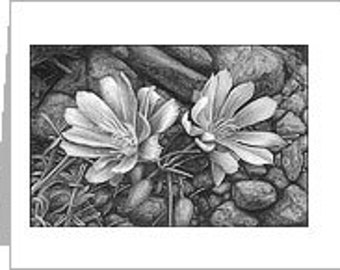 Bitterroot Notecard