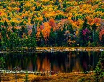 Burpee Pond