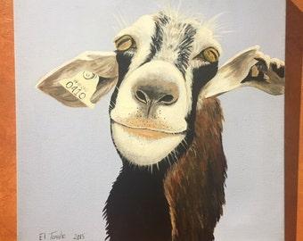Kiss Me (Goat)