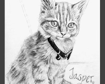 CUSTOM MADE Drawing of your Furry Friend