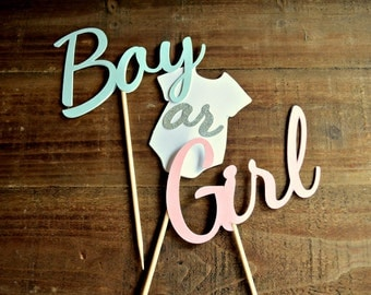 Gender Reveal Cake Topper Set.  Boy or Girl Cake Topper. Pink and Blue Cake Topper. Gender Reveal Centerpieces. Reveal Decorations.
