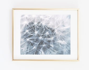 Dandelion Printable Wall Art, Dandelion print, Dandelion Seeds, Floral Photography, Botanical print, Nature Photography, Modern Wall art