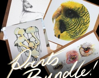 Assorted Fine Art Prints Bundle