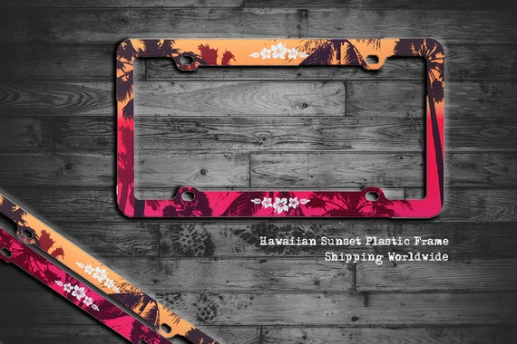 Amazoncom Zebra License Plate Frames Set of Two Made