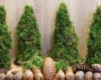 Moss cone set of 4