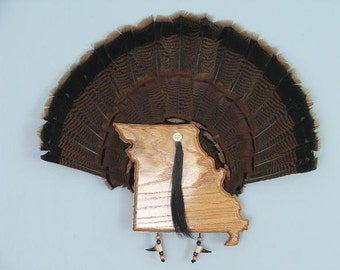 Wild Turkey Tail Fan Mount - Red Oak - State of Missouri