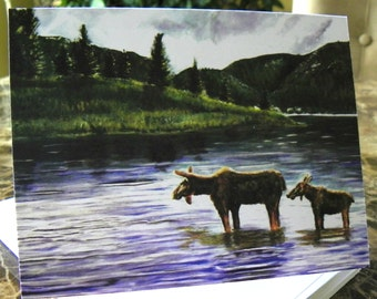 Vermont Moose, Art Notecards - 10 pack