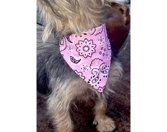 Paisley Pink Bandana