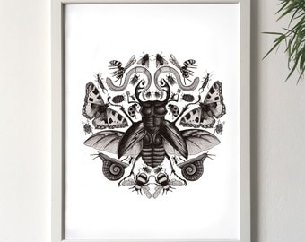 Creepy Crawlies // Art print// Illustration // handdrawn
