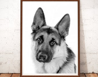 German Shepherd Print, Shepherd Prints, German Shepherd Photography, Instant Download, Dog Printable Art, Dog Print, German Shepherd Art