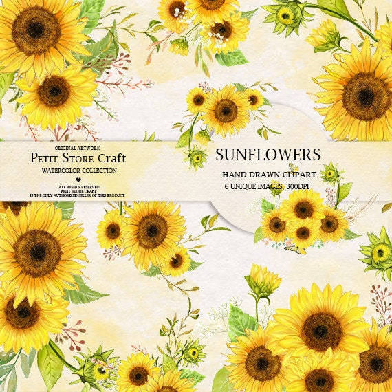 Sunflower Watercolor Flower clipart Hand painted DIY Clip