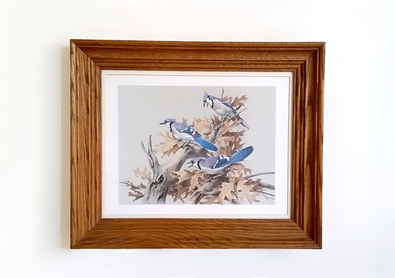 2 Framed Prints Roger Tory Peterson Blue Jays And Road Runners