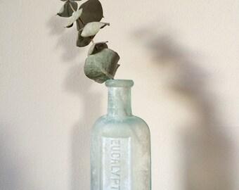 Vintage Eucalyptus Oil Bottle