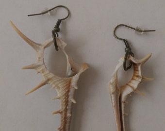 Cut Shell Earrings