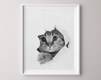 Animal Printable, Kitten, Canvas Pictures, Canvas Print, Peekaboo Animals, Nursery Print, Cute Baby Animal, Nursery Decor, Nursery Art