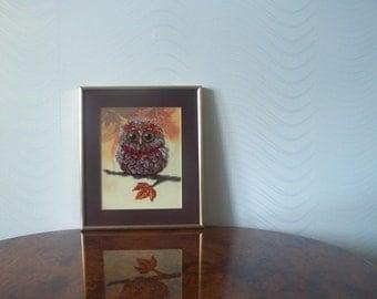 Owlet autumn