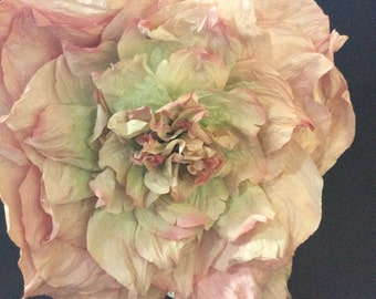 Giant paper peonie