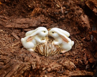 Bunnies Kissing, Rubbing Noses on Top of a Walnut, perfect for Mother's Day
