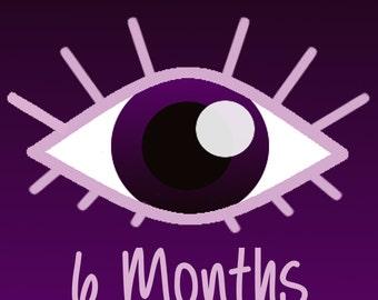 6 Months Tarot Reading