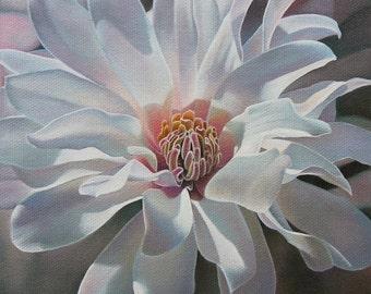 White Magnolia spring flower tree garden wall art print by Leslie Macon