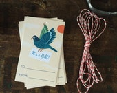 "Funny ""It's A Gift"" Pigeon Gift Tag - Birthday, Thank You Gift Tags - Pack of 10 with Twine"