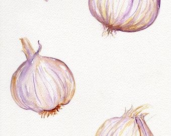Garlic watercolor painting original, Garlic art still life  9 x 12, kitchen decor, original watercolor art, garlic bulbs, kitchen art