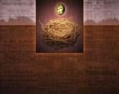 Bird Nest Egg. Robin Egg. Original Digital Art Photograph. Wall Art. Wall Decor. Giclee Print. SANCTUARY IV by Mikel Robinson