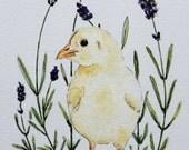 Original Baby Chicken Floral Watercolor Illustration