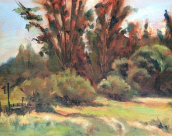 Painting of farm woods, trees, nature - original oil of Quail Hollow Ranch, California
