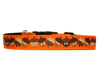1 Inch Wide Dog Collar with Adjustable Buckle or Martingale in Your a Nut