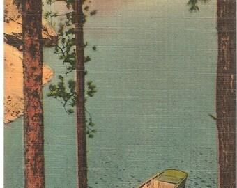 Vintage 1920's -1940's  Linen Postcard Stackade Lake , Custer State Park, Black Hills, South Dakota