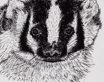 American Badger Card Letterpress Printed black ink on grey paper orginal illustration