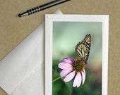 butterfly notecard, butterfly card, butterfly photo card, butterfly birthday, Butterfly greeting card, butterfly stationary, butterfly card