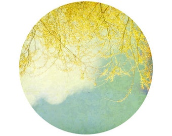 Willow Branches Photograph, Yellow, Blue, White, Clouds, Sky, Tree, Home Decor, Circle, Round Image 8x8 inch Print, Willow - Ci
