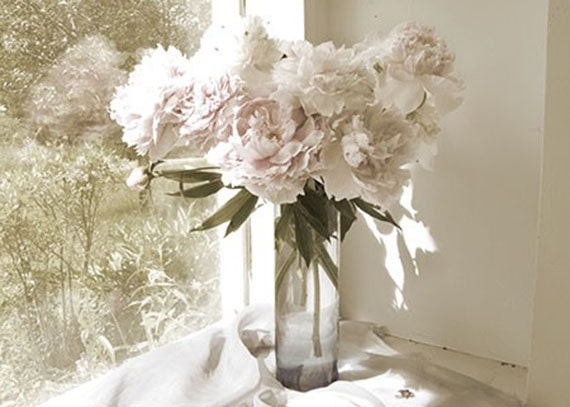 Peony Photograph, Hygge Decor, Vintage Inspired,  Flower Still Life,  Floral Art Print, Bedroom Art,French Country Home