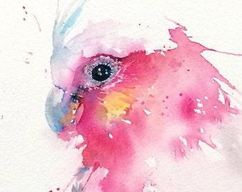 Galah illustration PRINT from my Australian Wildlife watercolour painting