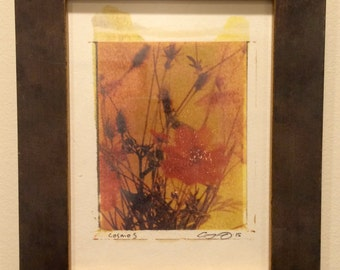 Polaroid transfer - framed original Orange Cosmos in pretty small frame