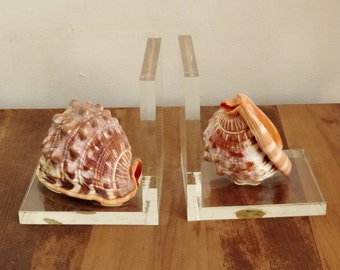 Mid Century Bookends Acrylic Lucite Shell Bullmouth Helmet Shell