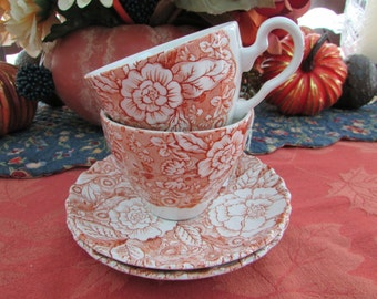 VINTAGE - Johnson Bros. Liberty Tea Cup and Saucer
