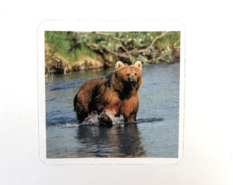 4 Sticker Decal, Grizzly Bear Fishing, Scrapbooking, Decoupage, Collage, Altered Art, Mixed Media Supply 38mm, 4 pc