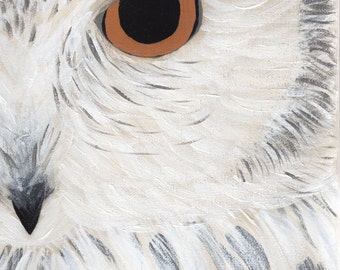 Gray Owl Original Painting