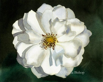 White Rose Painting Print, Watercolor, Fine Art, Home Decor, Floral, Flower, Fine Art, Realism, 5 x 7, Flower Painting, Watercolor Painting